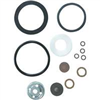 SPRAYER PART-REPAIR KIT SEAL/GASKT 61925