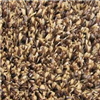 CARPET-FTx6' BRN/TAN VALUE GRASS TURF